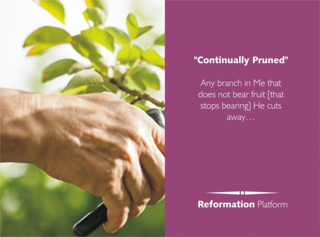 "The Man That Fits God's Work (3) ""…CONTINUALLY PRUNED!"""